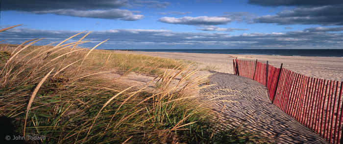 Main Beach Panorama with Dune Fence