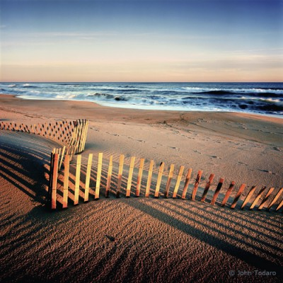 oceanfronting dunes