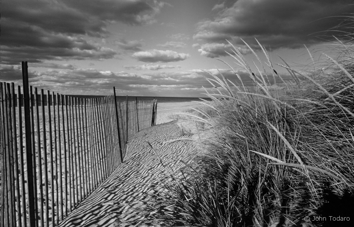 Main beach black and white