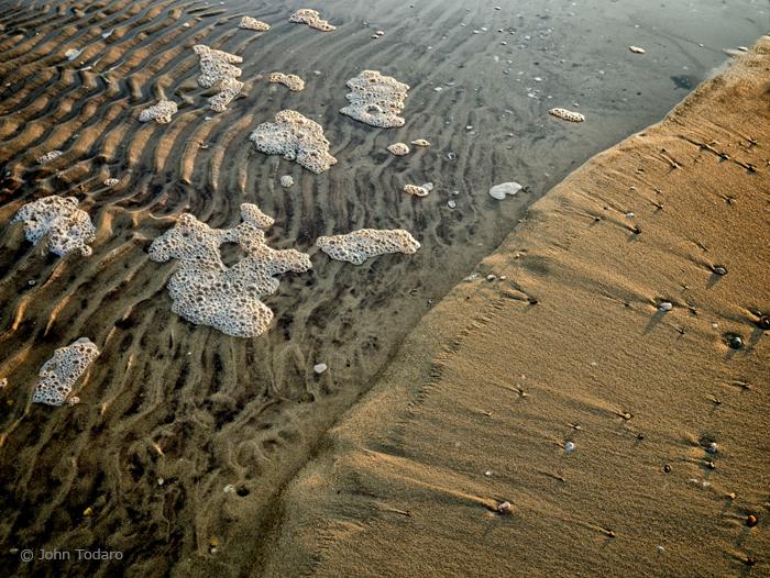 tidal tapestry
