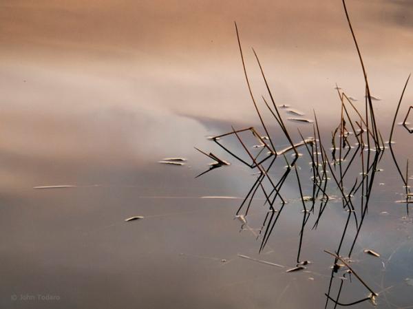 hook pond