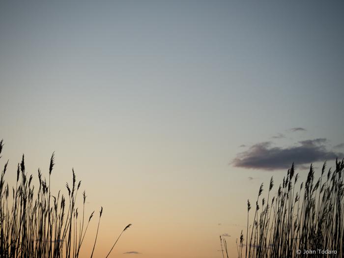 marsh cloud