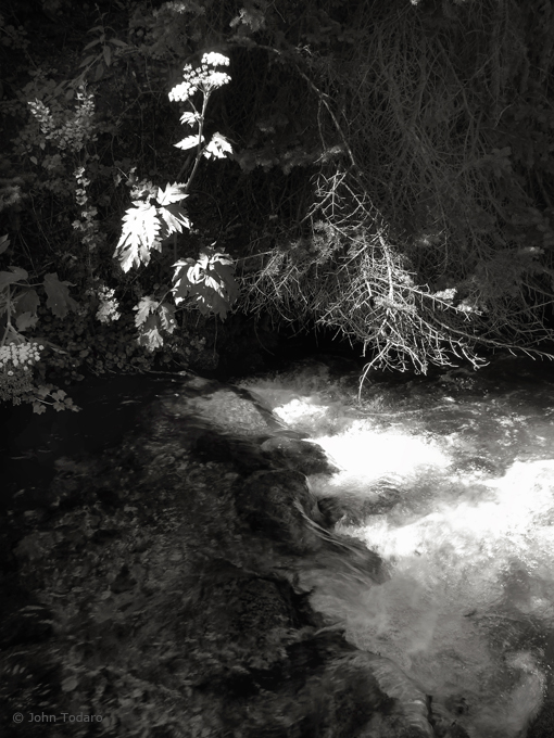 creek in high contrast