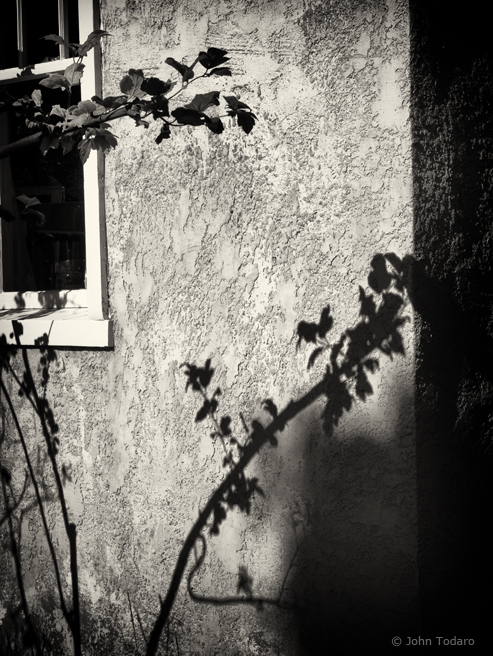 stucco shadows