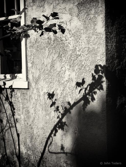 stucco shadows
