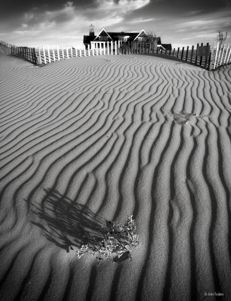 Dune At Wainscott