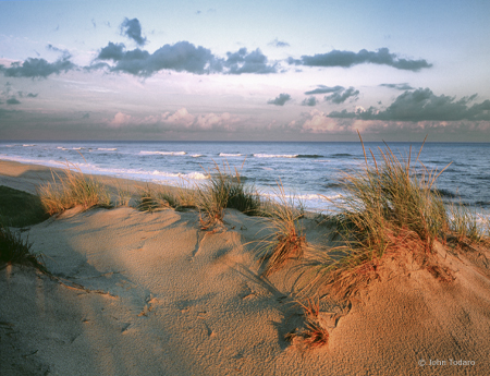Beach Study VI