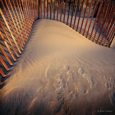 Dune Study I