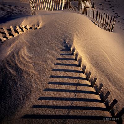 Dune Study II