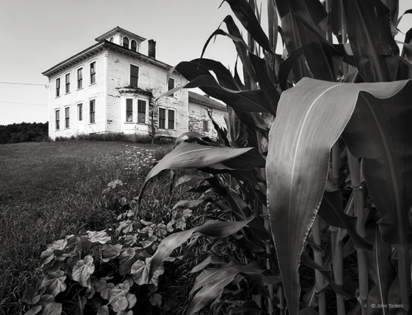 House and Corn